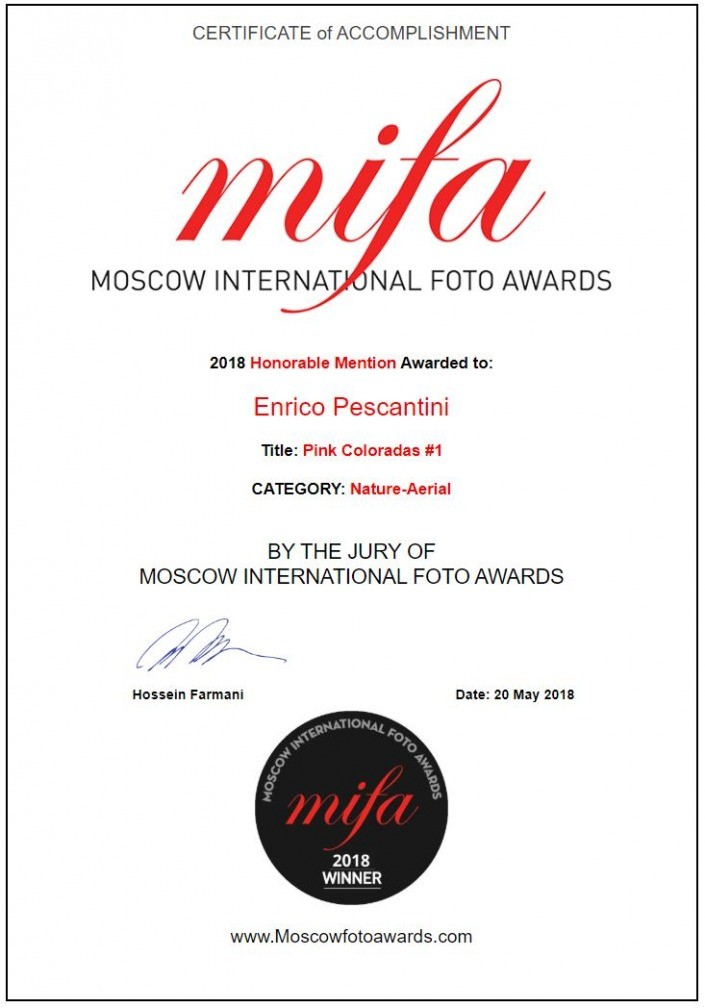 2018 Moscow International Photo Awards Pink coloradas honorable mention