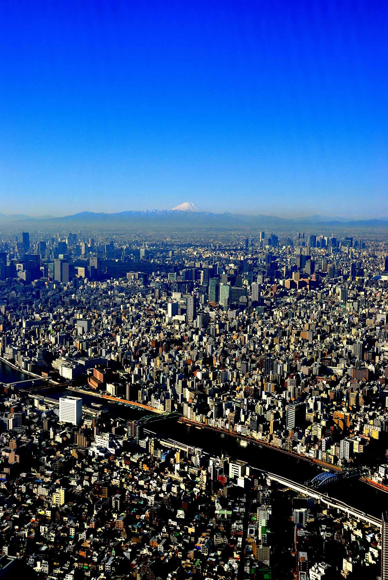 Tokyo, Japan - city and fuji