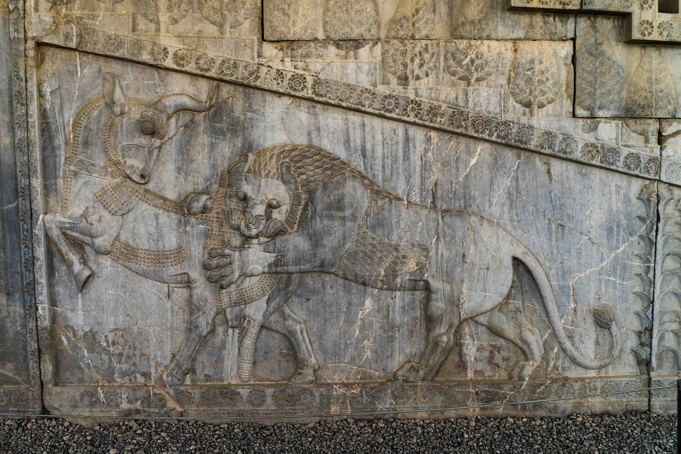 Persepolis Iran - The lion attacking the bull