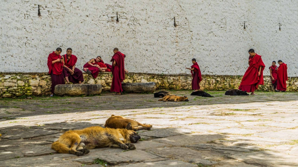 buddhist monk Bhutan Pescart Enrico Pescantini 8