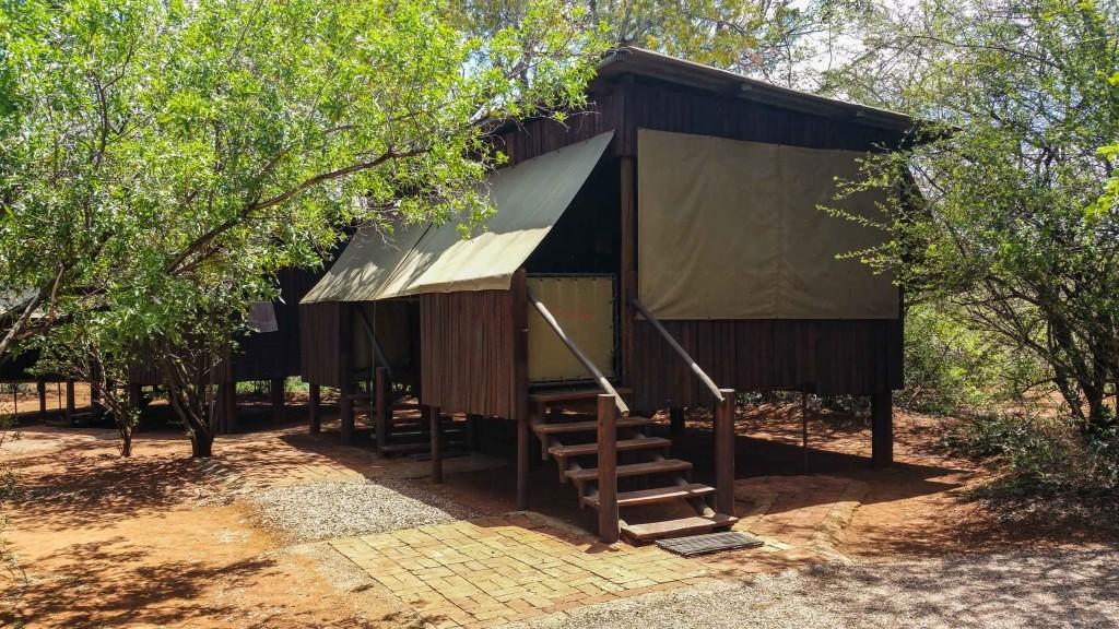 south africa madikwe safari pescart mosetlha bush camp 4