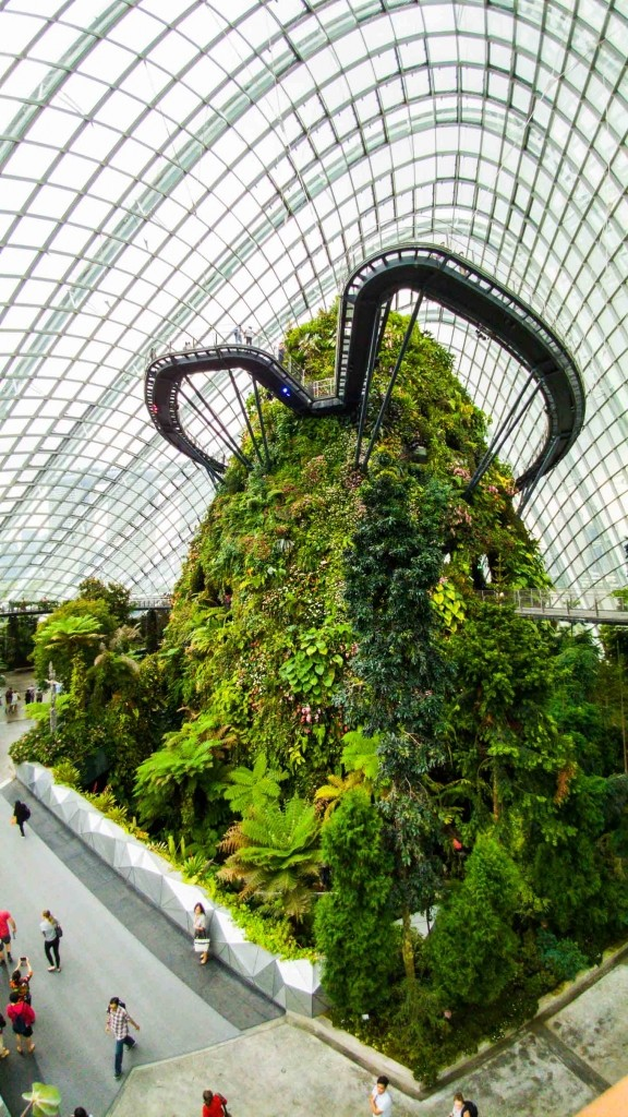 Singapore Pescart Enrico Pescantini Cloud Forest 3