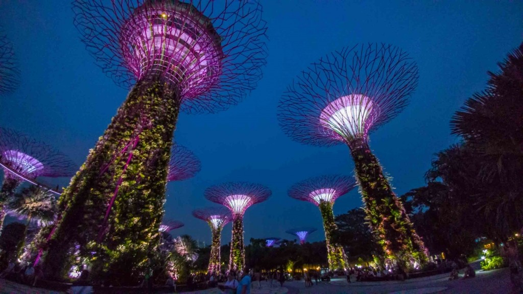 Singapore Pescart Enrico Pescantini Supertree Glove 2