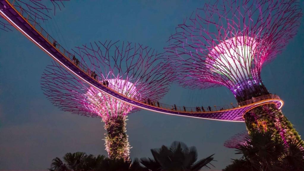 Singapore Pescart Enrico Pescantini Supertree Glove 3