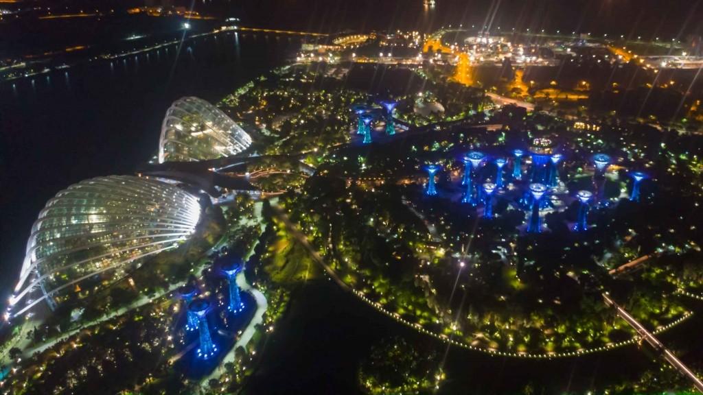 Singapore Pescart Enrico Pescantini Gardens by the Bay by night