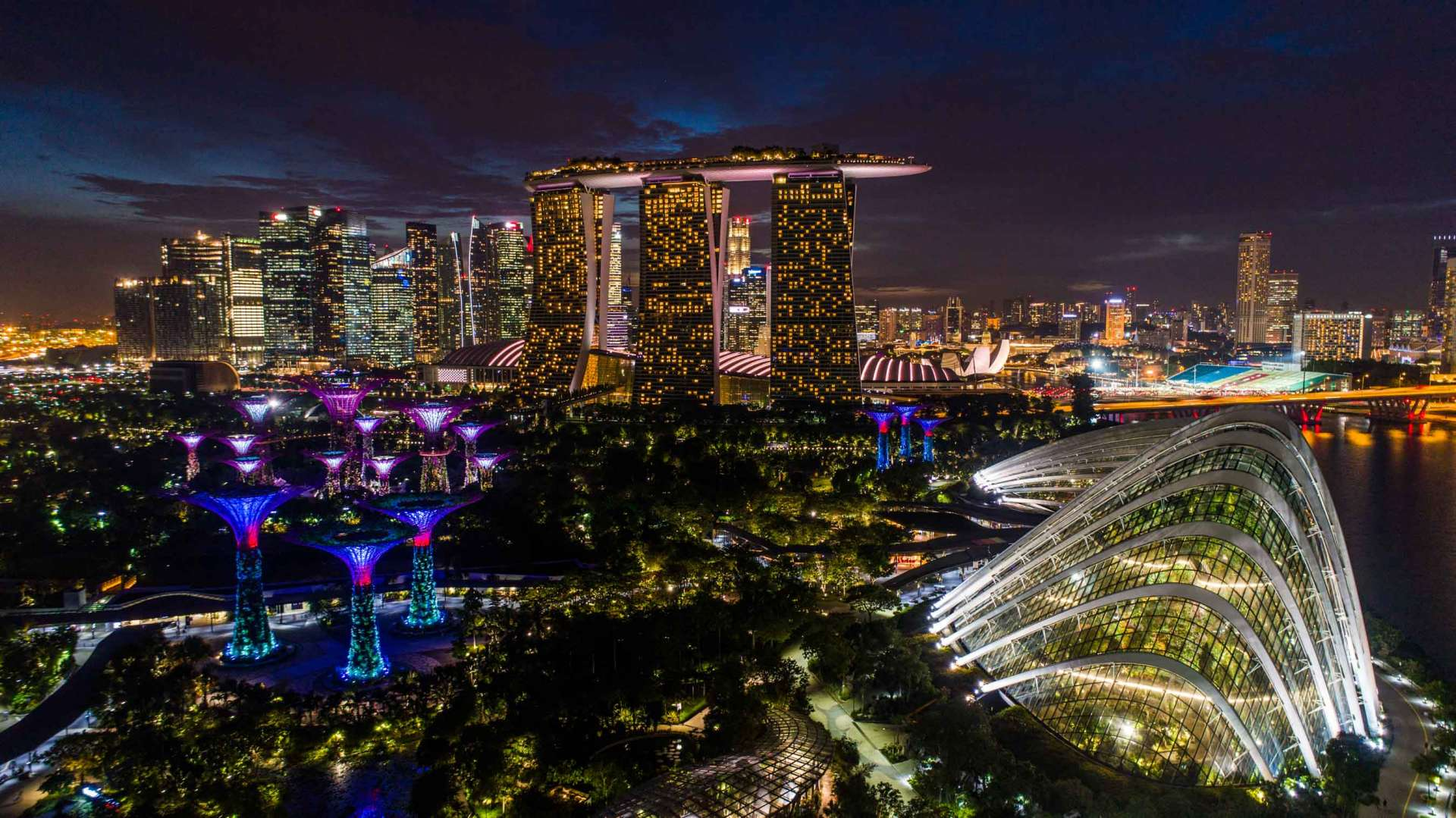 Singapore Pescart Enrico Pescantini Gardens by the Bay Marina Bay Sands nightscape drone 2