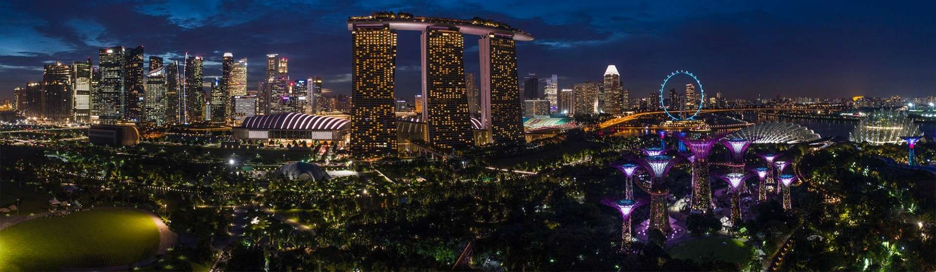 Singapore Pescart Enrico Pescantini Gardens by the Bay Marina Bay Sands nightscape drone
