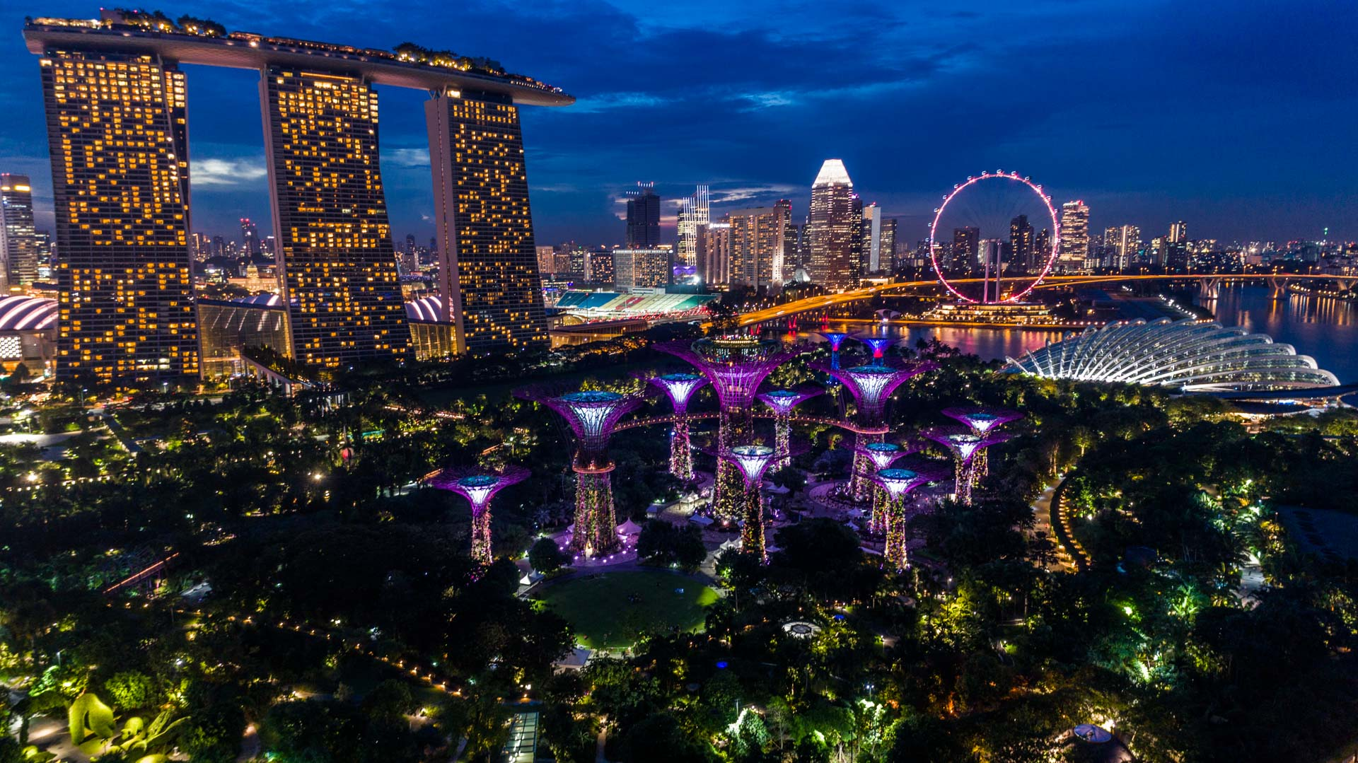 Singapore Pescart Enrico Pescantini Gardens by the Bay Marina Bay Sands nightscape drone 3