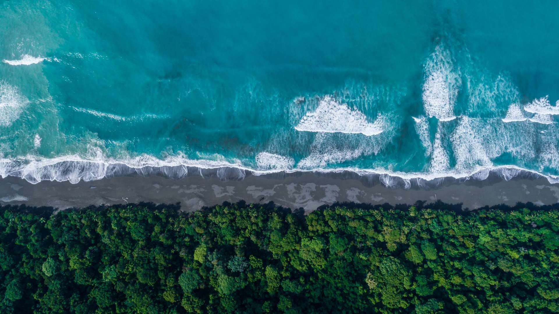 Carate Beach Costa Rica From Above Enrico Pescantini