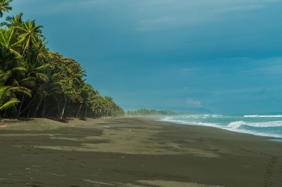 Costa Rica part 2: from Monteverde to Corcovado National Park!