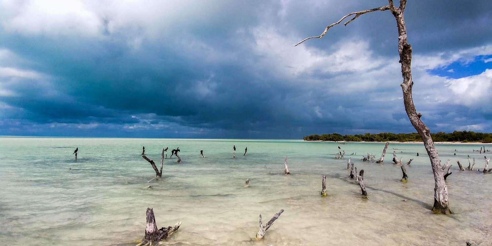 Isla Holbox Island Mexico Enrico Pescantini Pescart Travel Blog punta mosquito