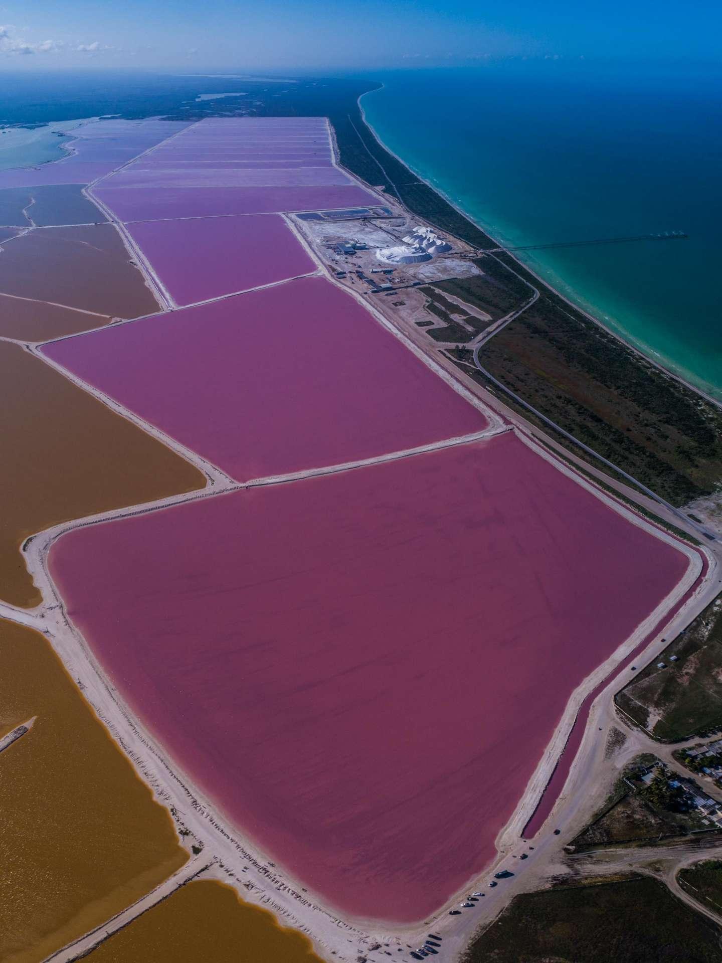 Pink lagoons Las Coloradas Yucatan Mexico Aerial View by drone Enrico Pescantini 5