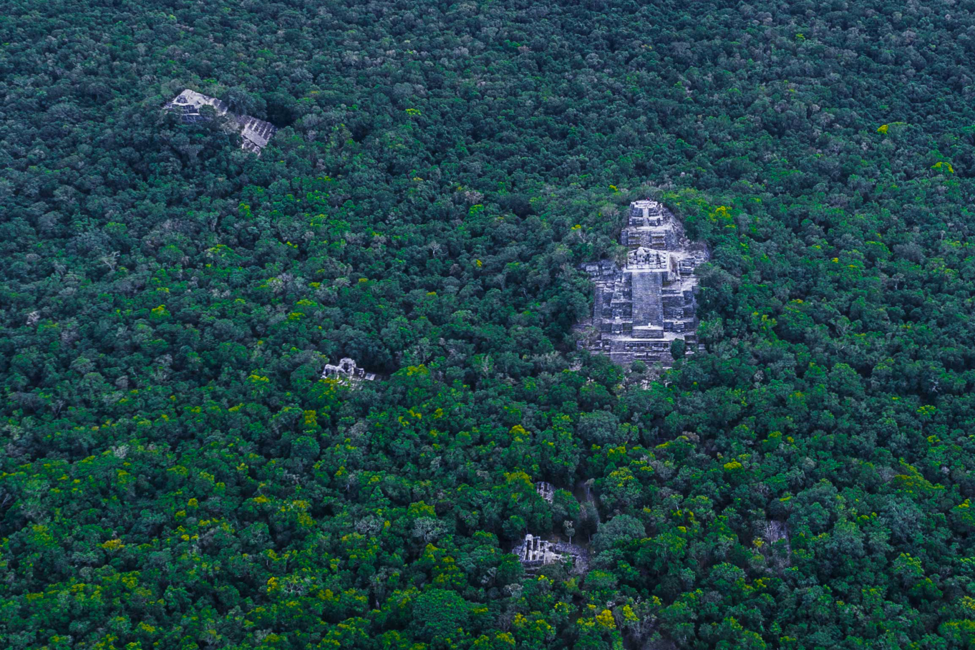 Calakmul Aerial view by drone Enrico Pescantini