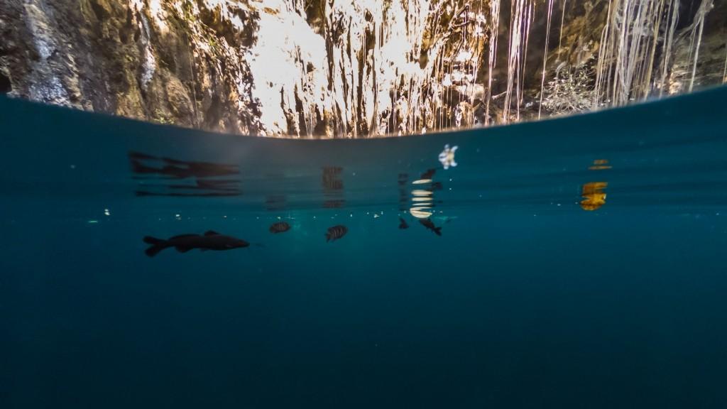 Yokdzonot Cenote Yucatan Mexico