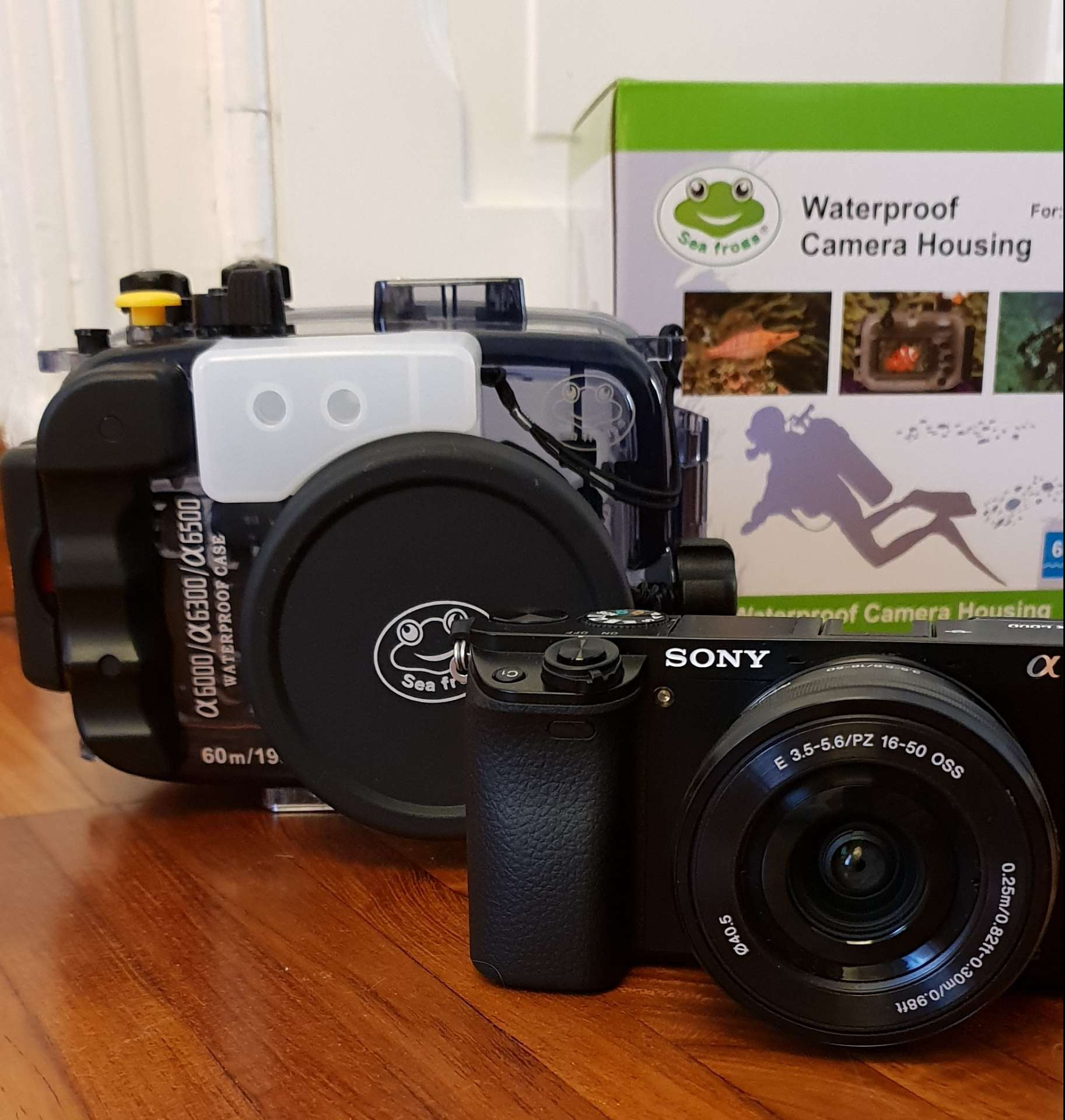 Sony a6000 Meikon SeaFrogs underwater case