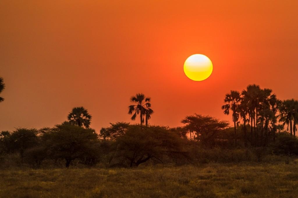 Namibia Enrico Pescantini Travel Photographer wildlife nature etosha sunset