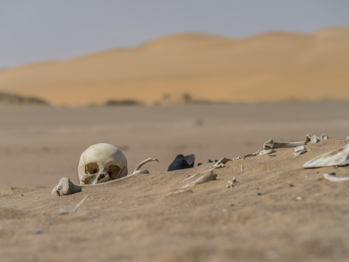 Namibia Enrico Pescantini Travel Photographer wildlife nature Sandwich Harbour Nomad Skull