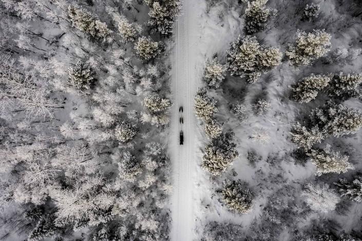 Tromso Dog Sledding drone aerial norway