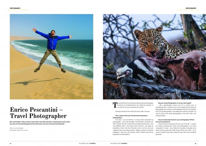 Flamingo Air Namibia Enrico Pescantini Travel Photographer 1