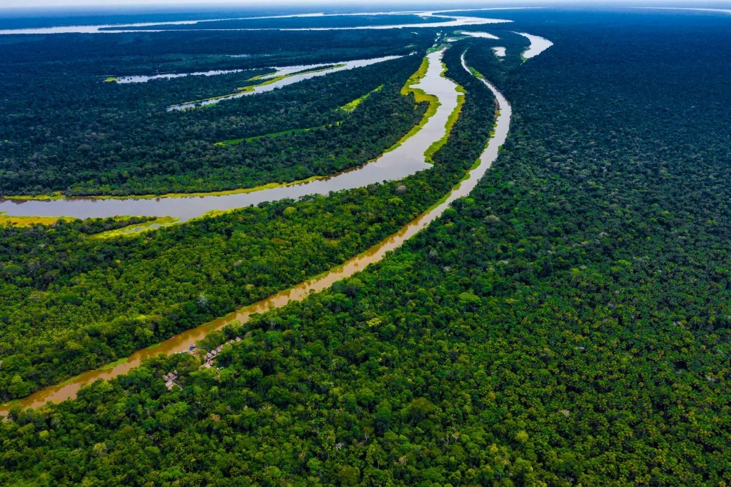 amazon forest iquitos peru drone aerial view