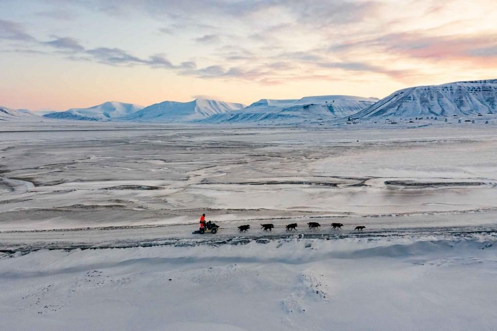 svalbard longyearbyen husky travellers dog sledding