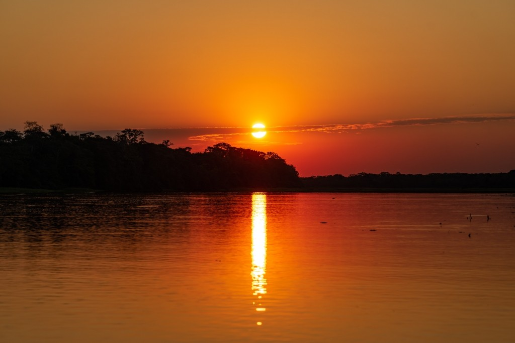amazon forest river iquitos sunset