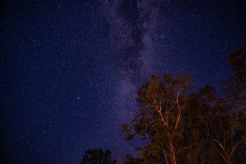 amazon forest river iquitos stargazing milky way