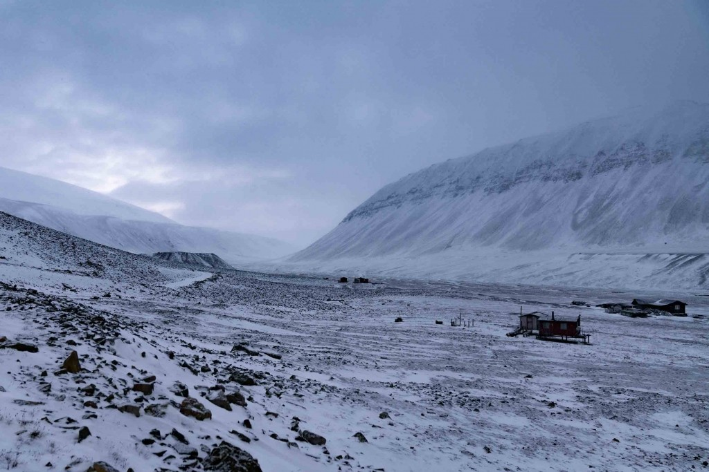 svalbard bear valley