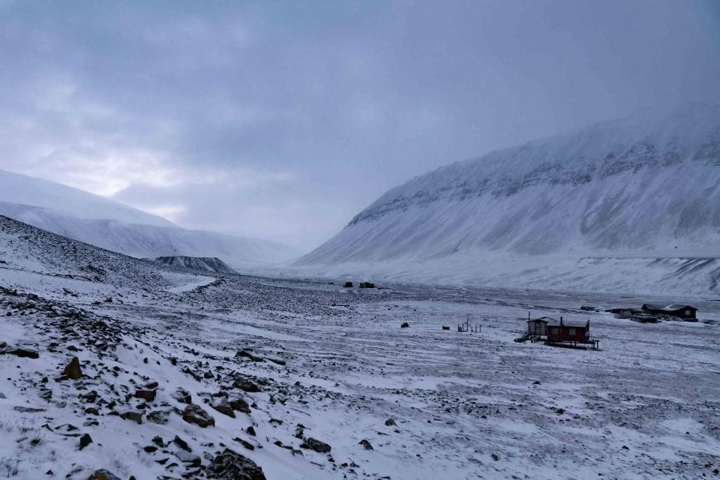 svalbard bear valley