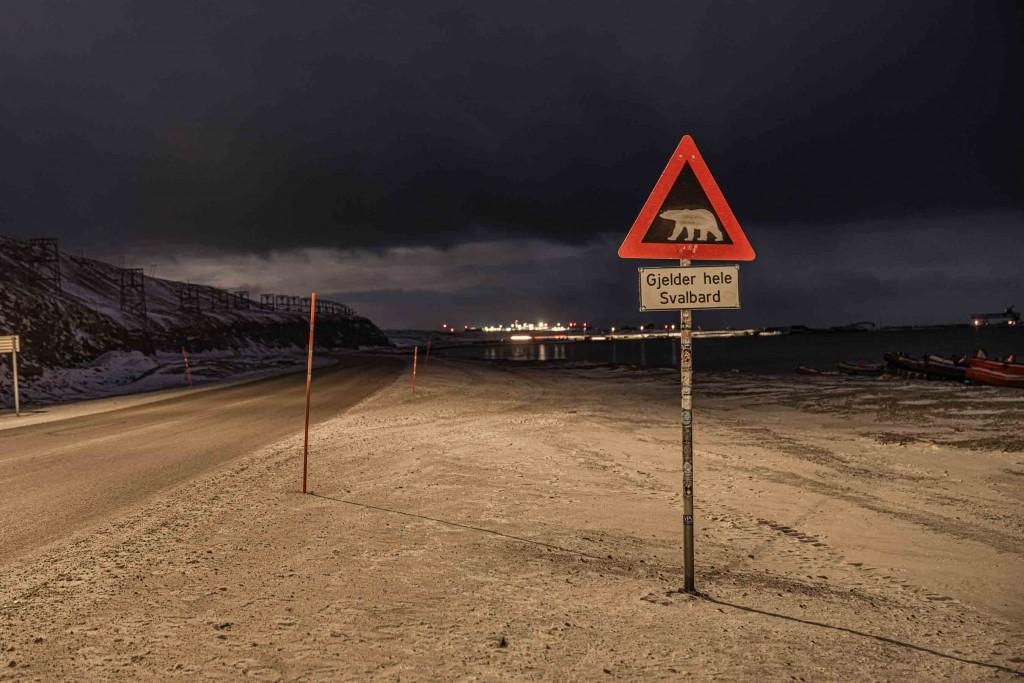 svalbard longyearbyen bear sign post