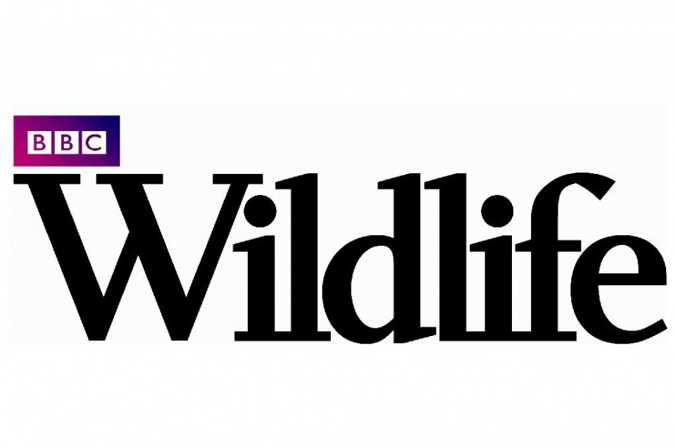 Pubblished on July 2020 BBC Wildlife Magazine