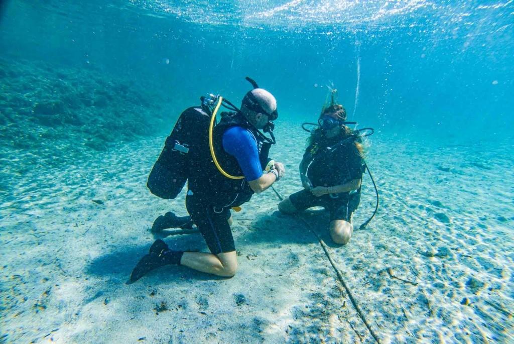 scuba diving lessons asinara