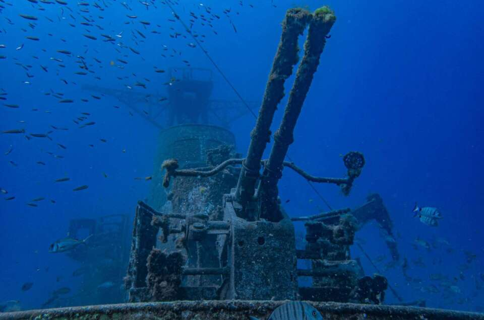 Best wrecks for scuba diving in Madeira and Porto Santo
